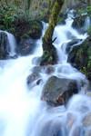 Cascada, Fragas do Eume