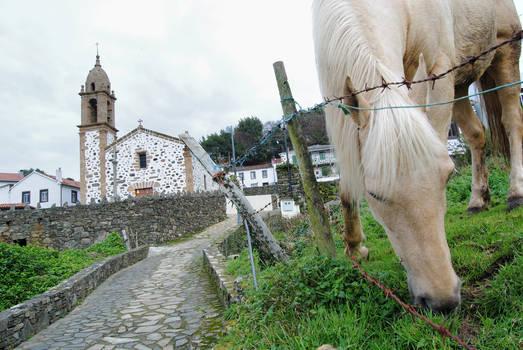 Ermita, caballo