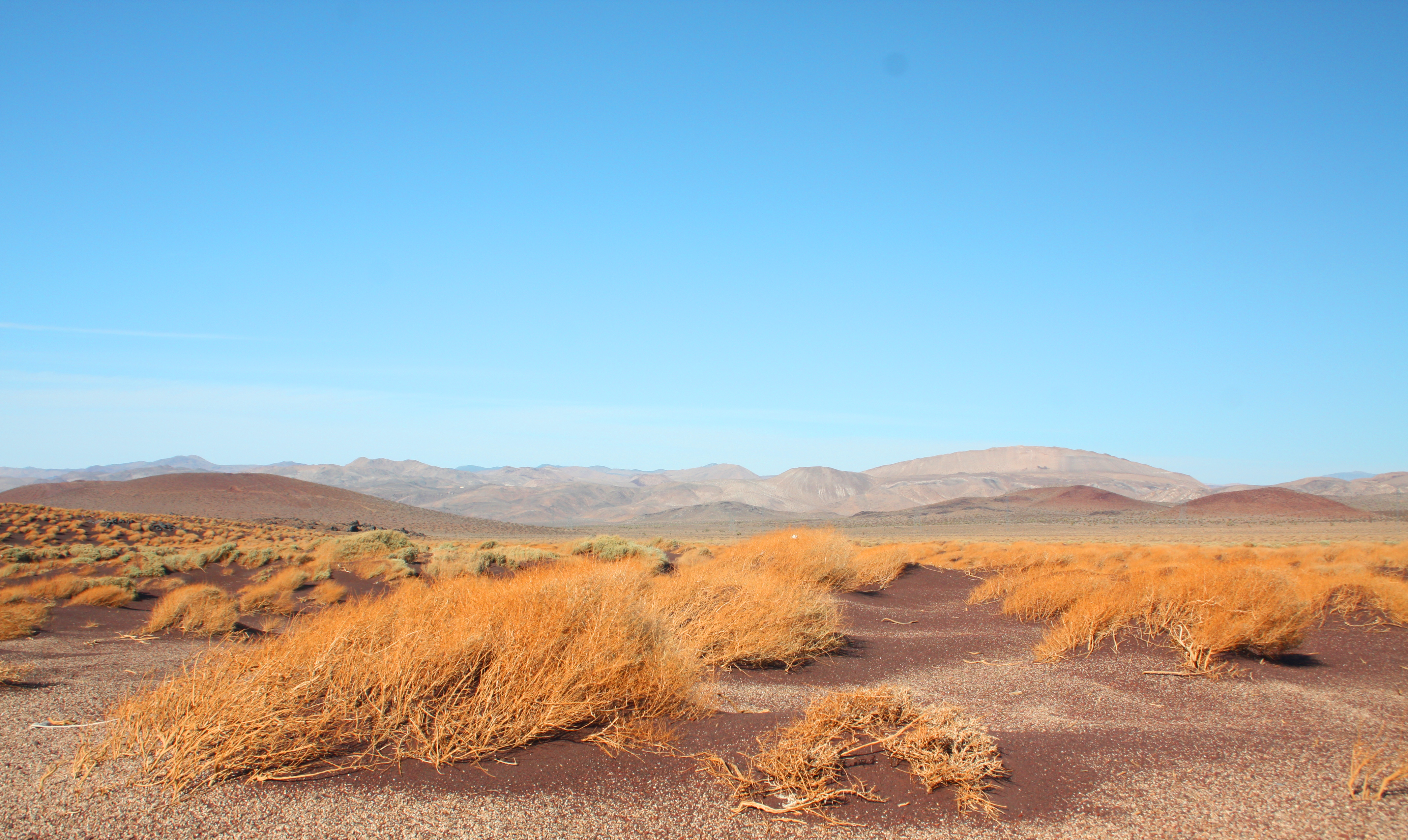 Desert landscape by muttiniraq on deviantart for Desert landscape