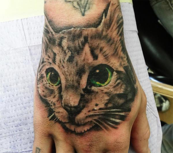 Cat Portrait by dnmn89