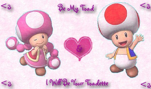 dans Toad et Toadette Toad_Toadette_by_haleybear82
