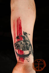 The Crow by koraykaragozler