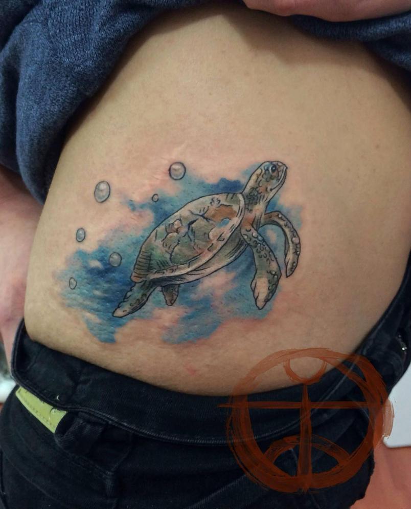 Turtle by koraykaragozler