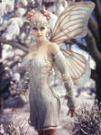 Fairie 24
