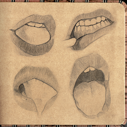 Digital Sketchbook Study 02 Mouth Preview 2
