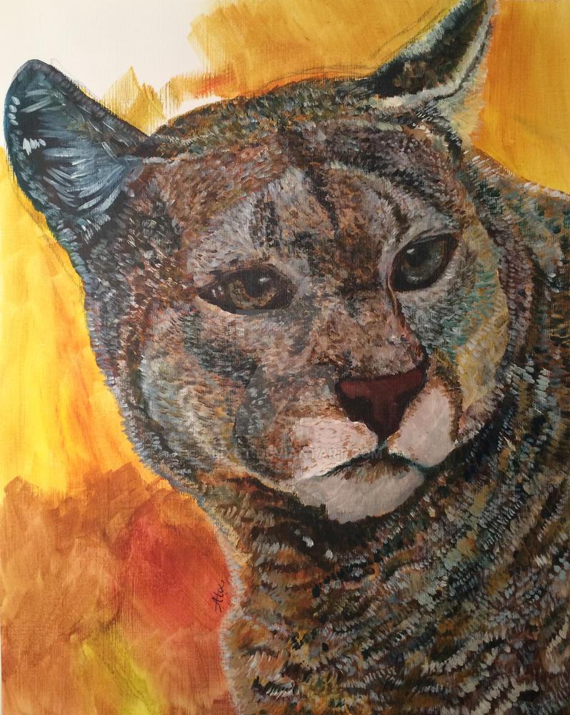 Puma ensoleille by alixbt