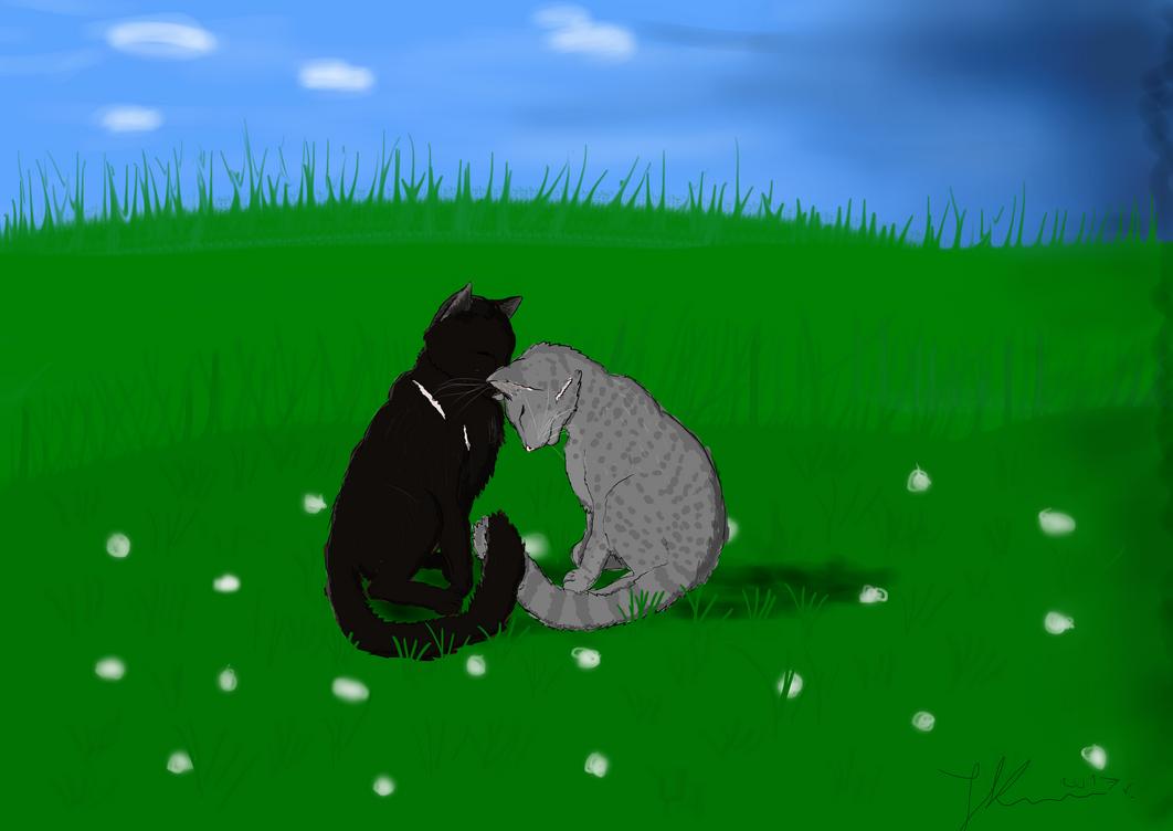 Lovely scene - on grassland. by jmruczus