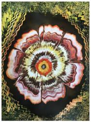 The Flower Series - I