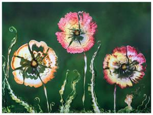 The Flower Series - II
