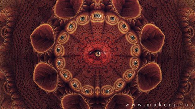 Eye See Everything I