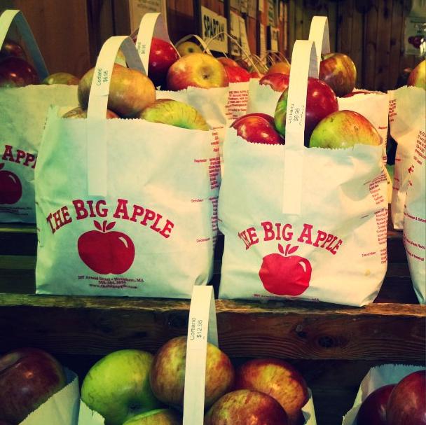 The Big Apple by ErinMariel