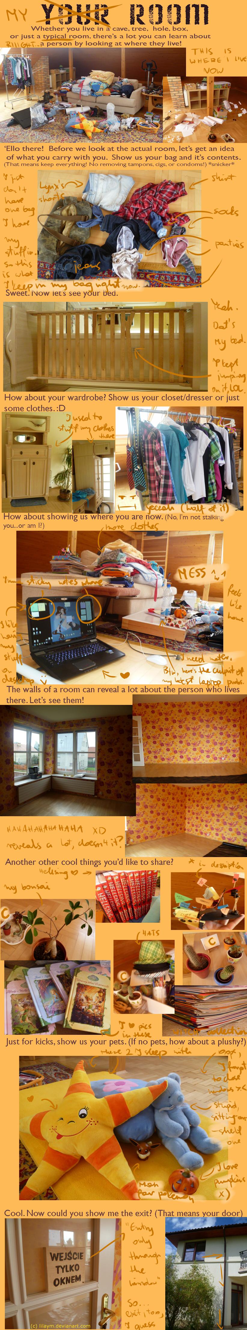 Mah room is awsome - meme by LilayM