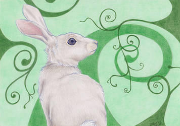 Rabbit Jungle by Azerane
