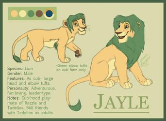 Jayle: Reference Sheet by Azerane