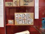 British Museum 10