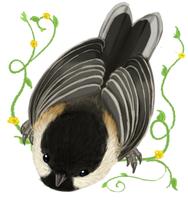 Bird by ryuukuringo