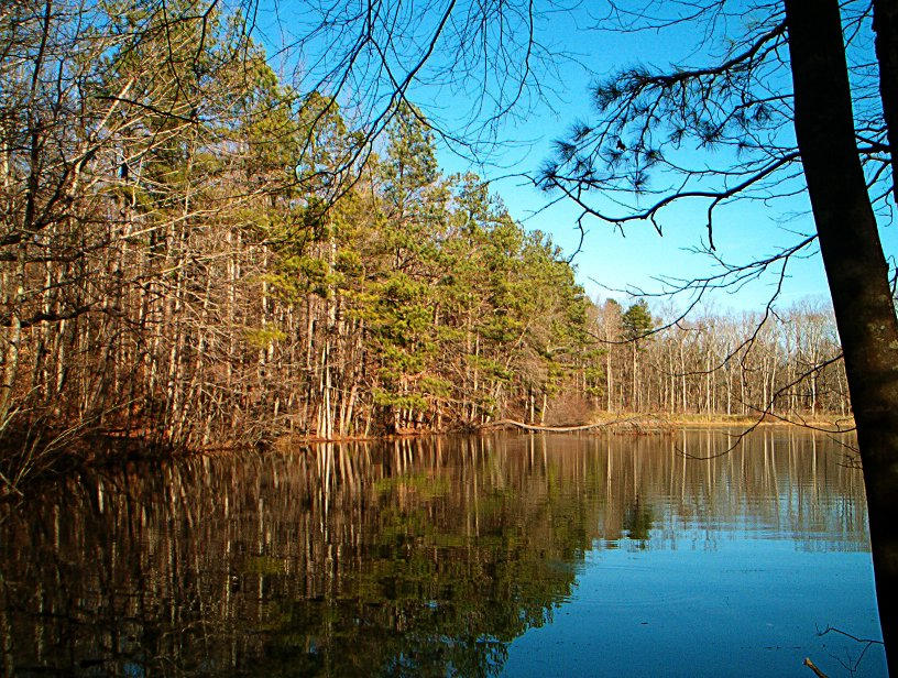 Sibley Pond by zloizloi