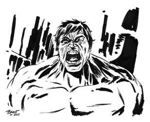 Hulk by Schoonz
