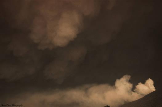 bushfires 09