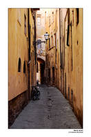 Back Alley by pecchio