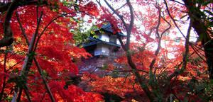 Hirosake Japan