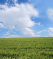 premade spring meadow by monika-es-stock