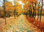autumn path 2
