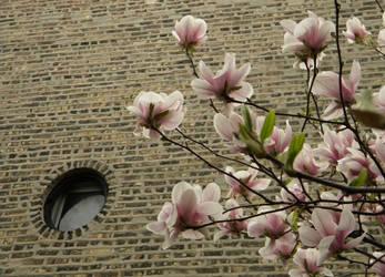 Spring Bricks by vixentheangryfox