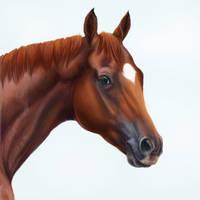 Animal Kingdom by vixentheangryfox