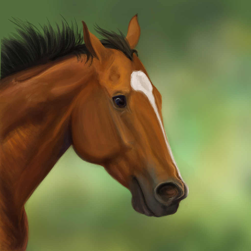 Contender: Goldencents by vixentheangryfox