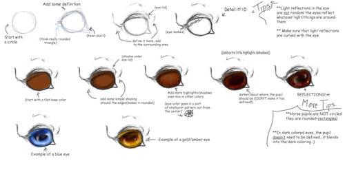 Horse Tutorial:Eye Basics by vixentheangryfox