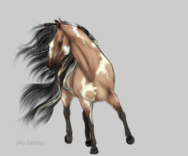 My Animal bios Andalusian_Horse_by_vixentheangryfox