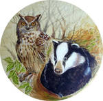Horned owl and Badger drum by wendyf
