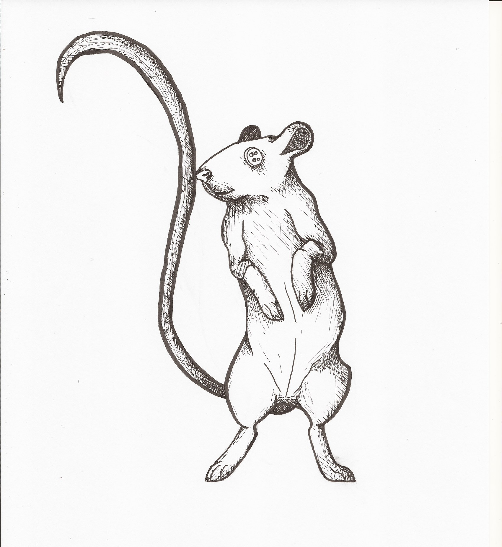 Coraline Circus Mouse Pen By Bradsc On Deviantart