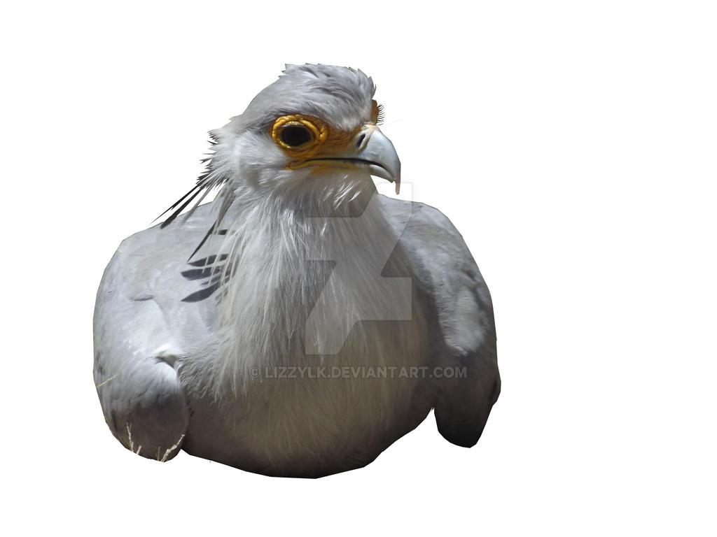 Pre-Cut Secretary Bird by lizzylk