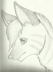 Adrien feral portrait