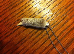 Custom Tooth-and-Fur Necklaces for sale