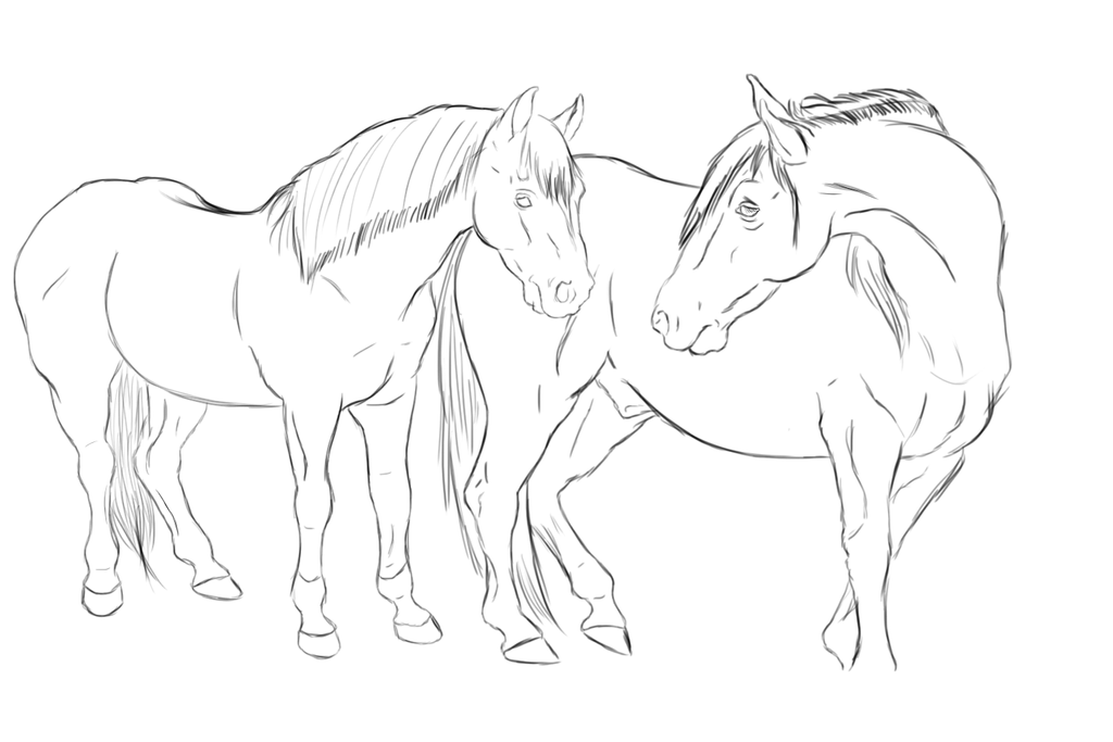 Two Horses In Love Drawing