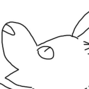 lelyo's Profile Picture