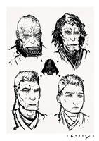 Progression of a Sith Lord by TimKelly