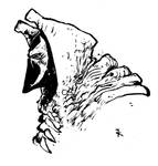 Spawn face 1