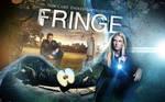 Fringe wallpaper