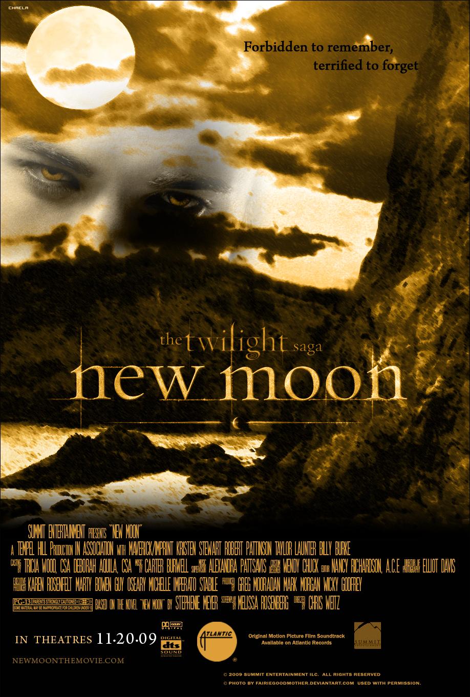 http://fc04.deviantart.com/fs42/f/2009/083/8/c/New_Moon_Poster_LaPush_Cliff_by_chaela_chan.jpg