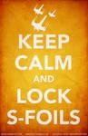 Lock S-Foils
