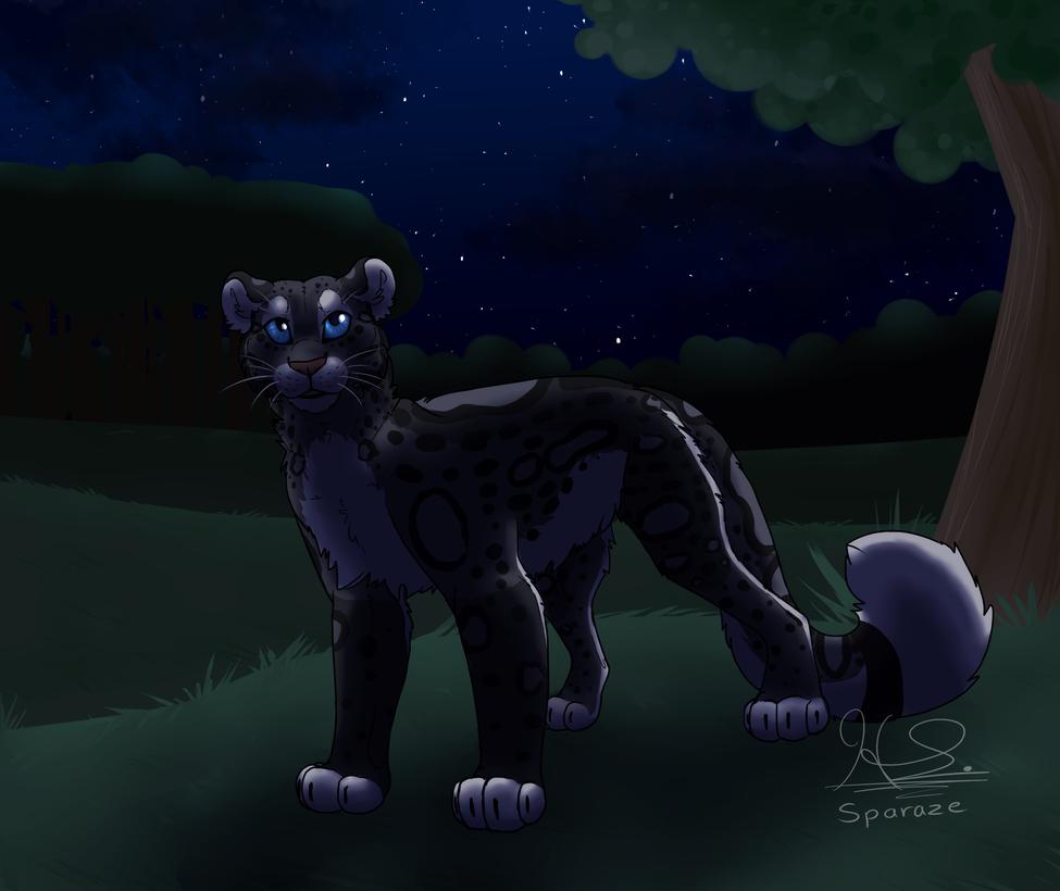 EBC: Gift: Nighttime Sky by Sparaze