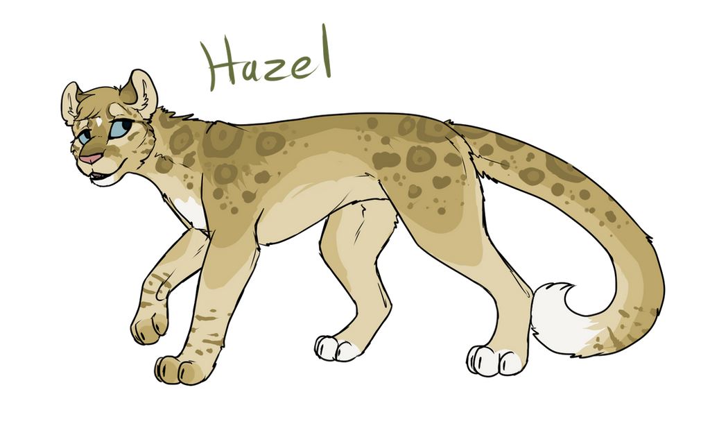 Design Contest: Hazel by Sparaze