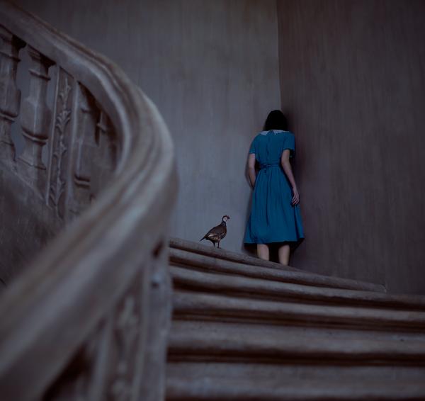 Hide and Seek by Rebeca-Cygnus