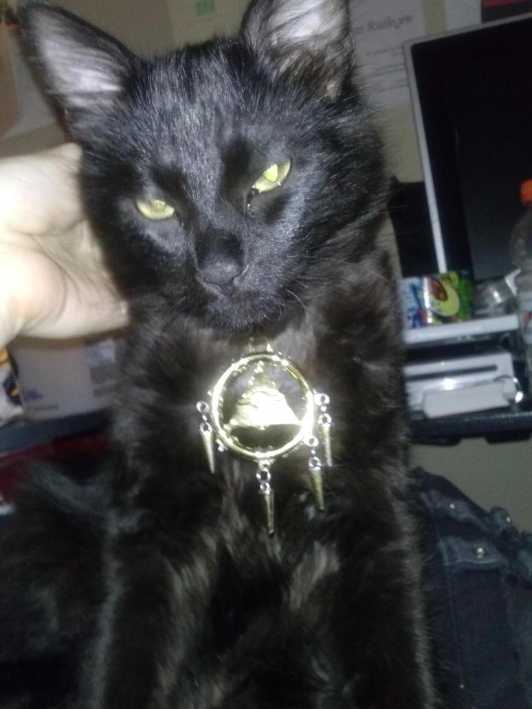 Evil Kitty Bakura (Sebastian) by YamiArah