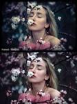 50 Beautiful Lightroom Presets - Framed Tranquil