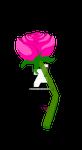 Pink beauty  by Howlingmist13